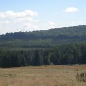 Tânovul Mohoș - Mohos tőzegláp
