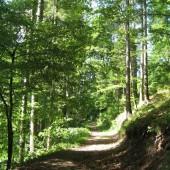 Natura la Băile Tuşnad-Természet Tusnádfürdő